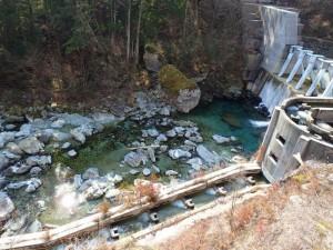 第二(新)堰堤付近,でっかい流木が増水で・・_0226