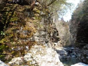 27番・蔓下げの谷,入口。かなり小さくなった氷柱(ツララ)・これが融けきったら..春!?_0226