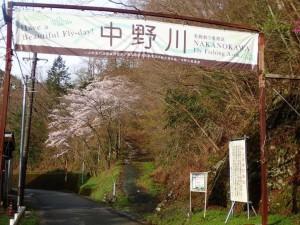 中野川川入口横断幕と桜_0408